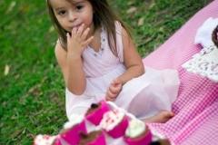 Ensaio fotografico Smash the cake guaianases